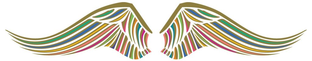 B&K vleugels